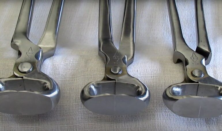 hoof nippers for small hands